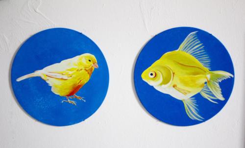 Canary yellow bird and fish