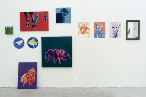 Installation view 2016